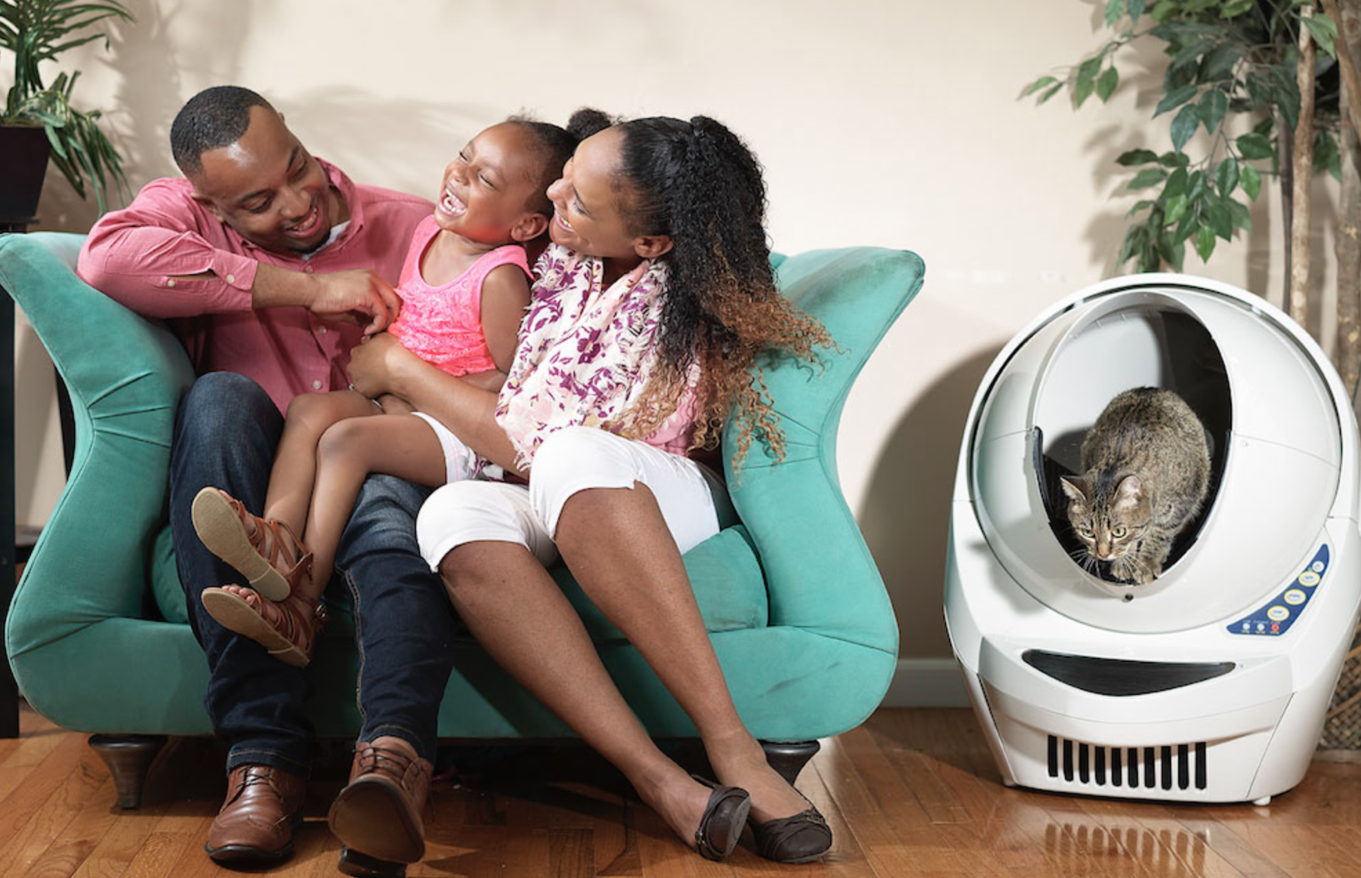 The Best Automatic Litter Box