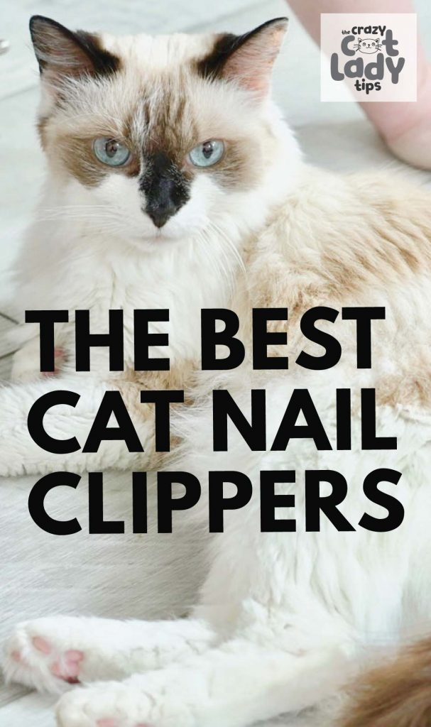 If you are a cat owner, odds are, you've searched for the best cat nail clippers. Sometimes, it can be a struggle because there are so many options to choose from these days. We are here to help! #cats #catnails #catnailtrimming