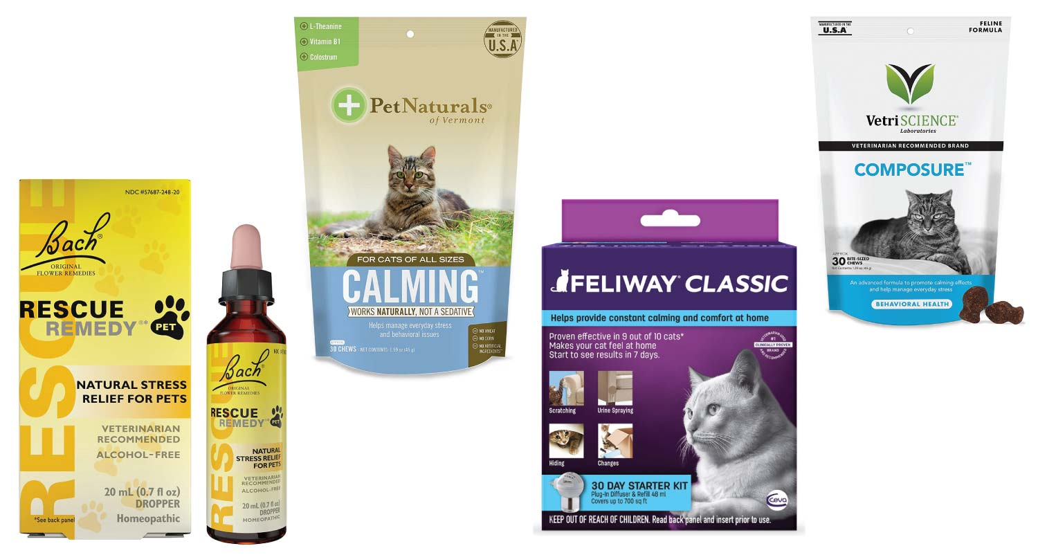 Best Calming Products for Cats to Ease Cat Anxiety