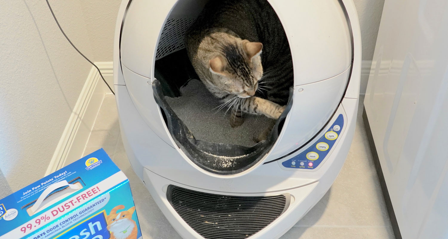 What To Do When Your Litter Robot Smells