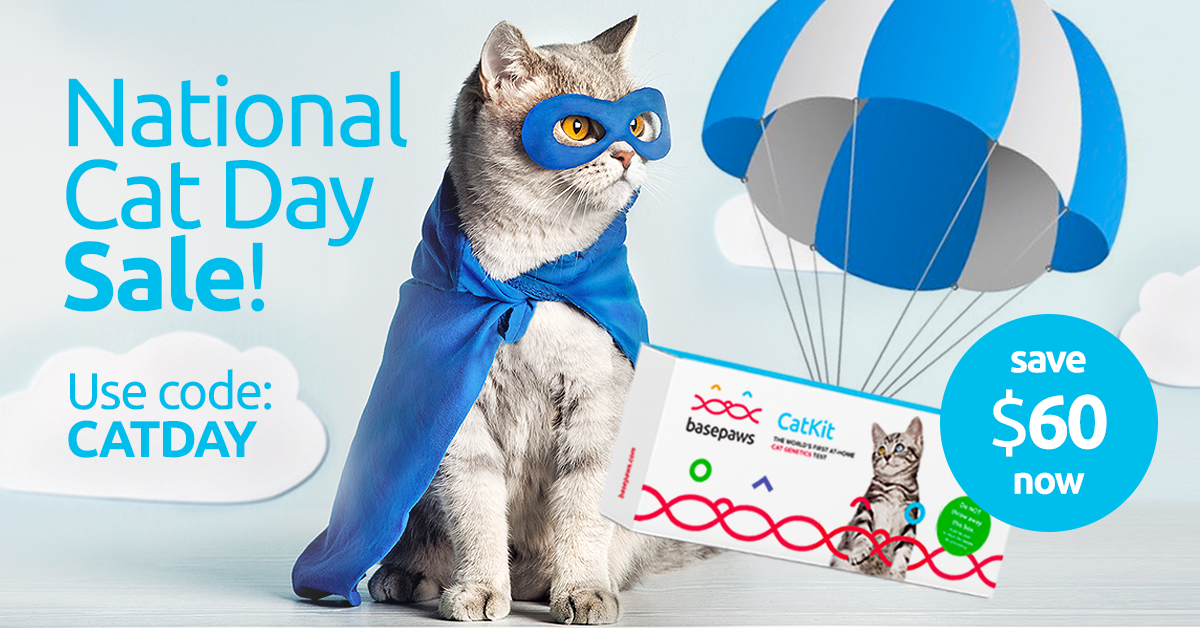 Basepaws Coupon for National Cat Day Sale