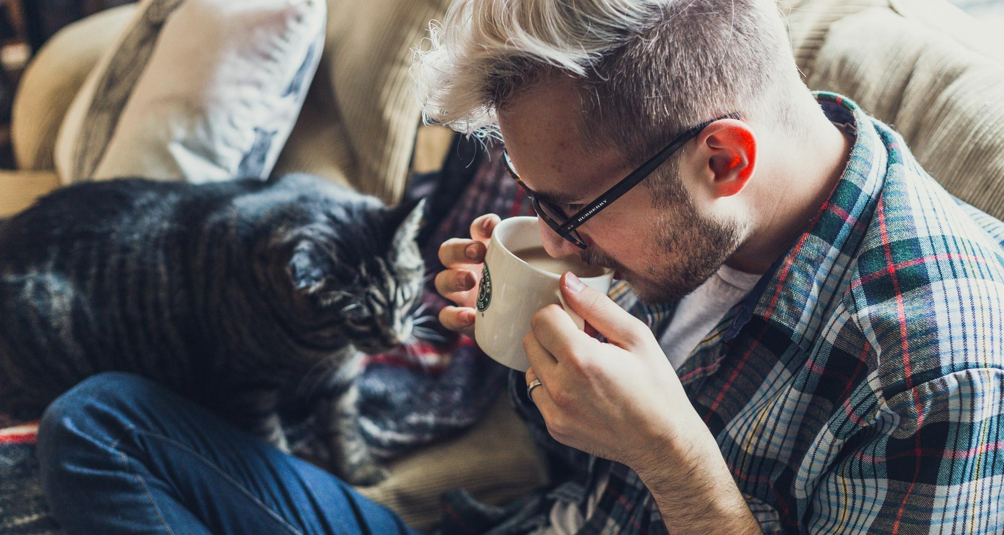 How to Register an Emotional Support Cat