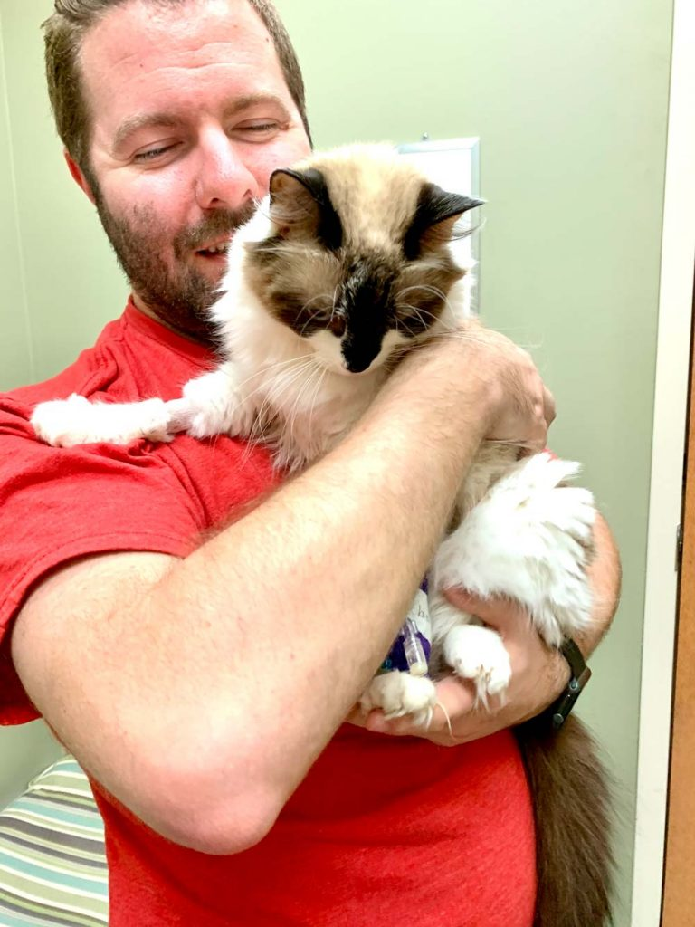 How long can a cat live with kidney disease